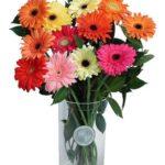 Co mówi liczba kwiatów!