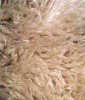futrzak-dywan-pokrowiec