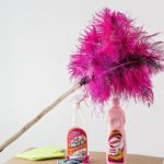 feather-duster-709124_1920-1