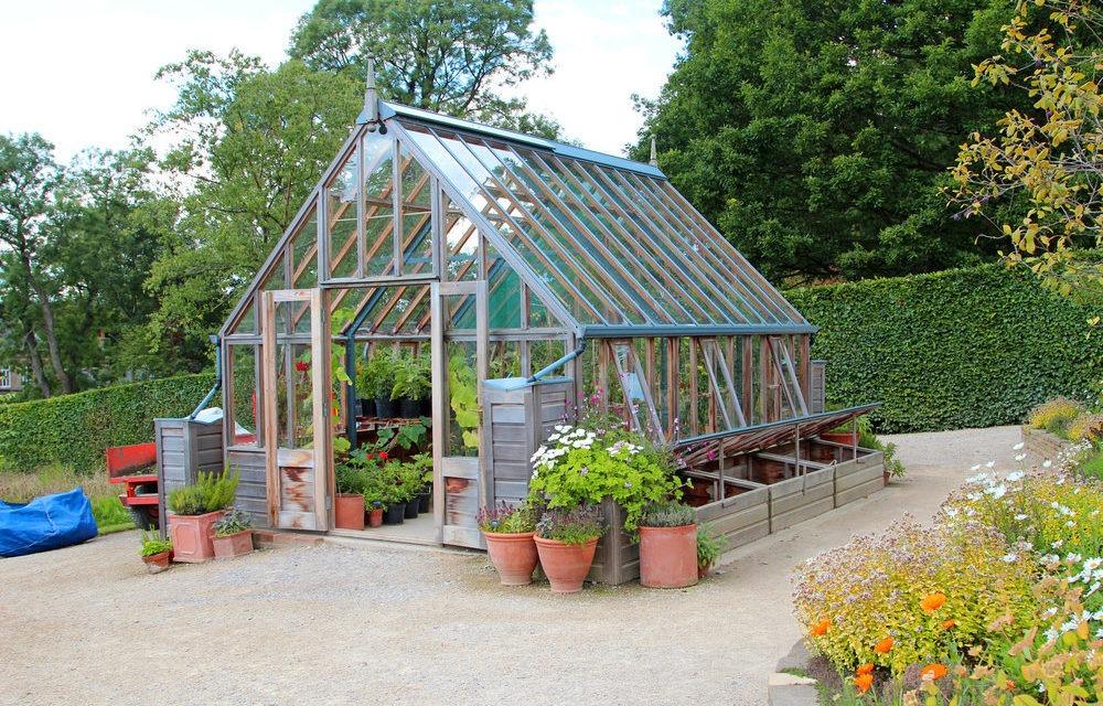 Tunel czy szklarnia? Wybieramy akcesorium odpowiednie do naszego ogrodu!