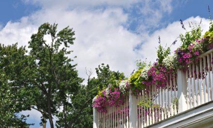 Zaczarowany ogród – zaczarowany balkon