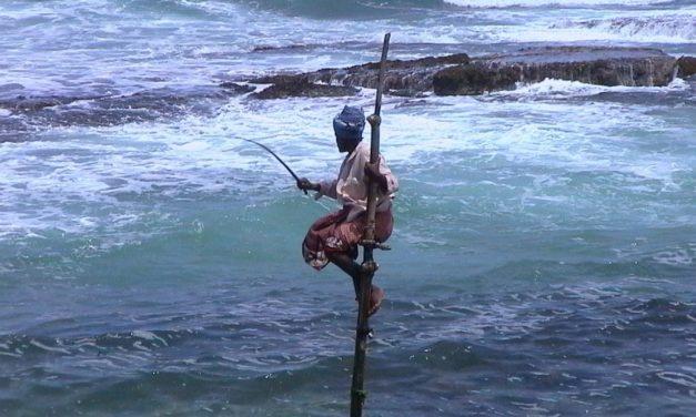 Sri Lanka wczasy, egzotyczne wakacje z biurem podróży.